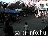 Sarti élő webkamera, képfrissítés: folyamatos