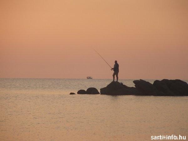 Halász Sartin