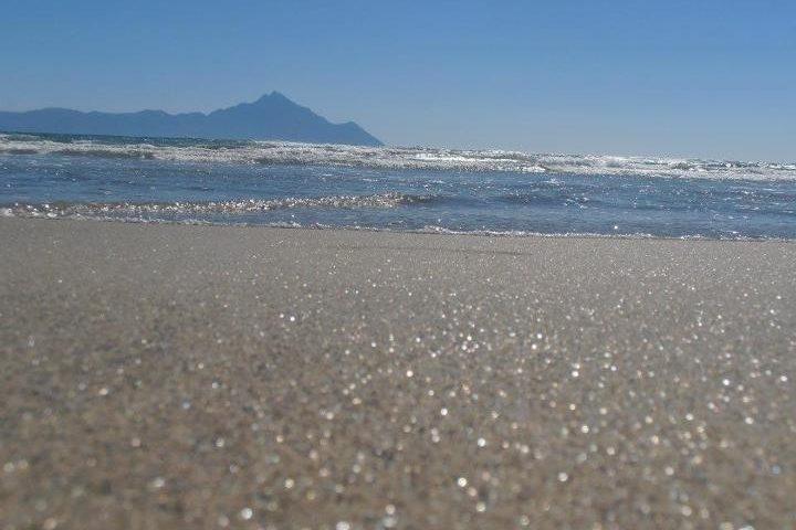 Arany homok, Sarti