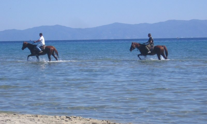 Lovaglás Sarti Beachen