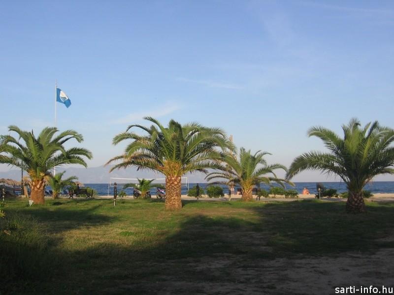 Kék Zászló Szártin, 2012