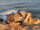 Felkelő nap fénye a szikláknál