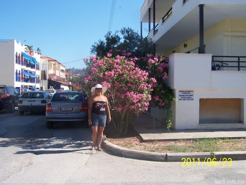 Sarti utcája, (ciklon66) Sarti 2011