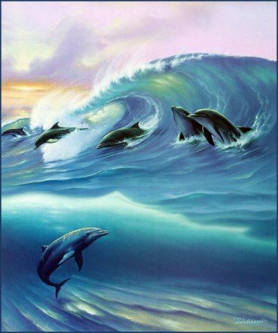 Jim Warren - Surfin Dolphins
