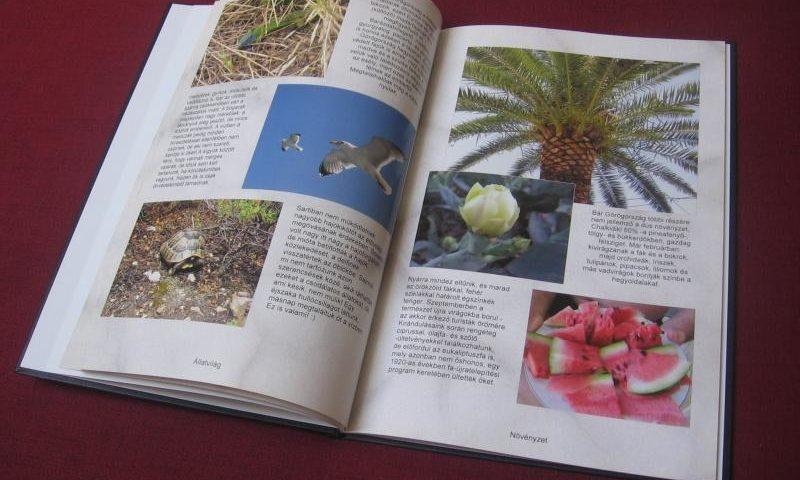Sarti Fotókönyv