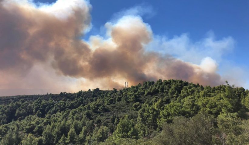 Tűz Sarti közelében