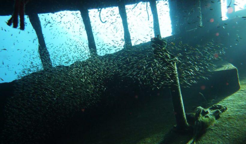 Víz alatti múzeum