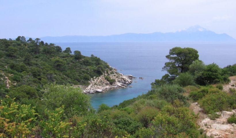 Sarti környéke